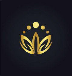 lotus flower colored gold logo vector image