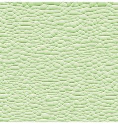 pattern green background vector image
