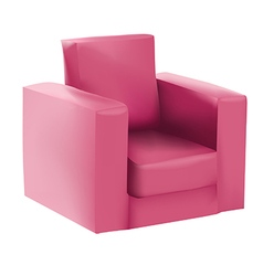 Raspberry armchair vector