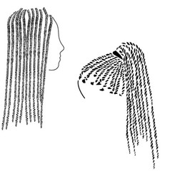 Small braids in afro style on long hair vector