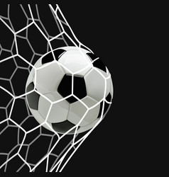 soccer or football ball in the net vector image
