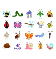 Funny bugs cute insects isolated on white vector image vector image