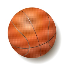 Basketball Ball vector image