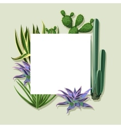 Frame with cactuses and succulents set Plants of vector image