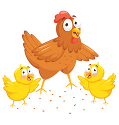 Chicken and chicks vector