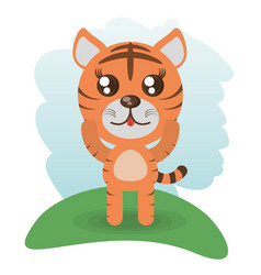 cute tiger animal wildlife vector image
