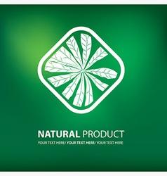 Floral logo 11 vector