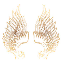 golden wings isolated on white background design vector image