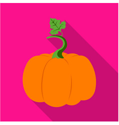 Pumpkin icon flat single plant icon from the big vector