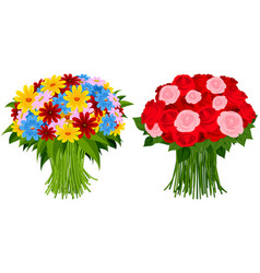 two bouquet flowers vector image