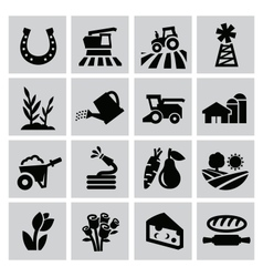 agriculture and farming vector image