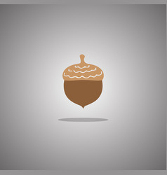 acorn brown isolated vector image