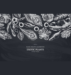 floral design with chalk banana palm leaves vector image