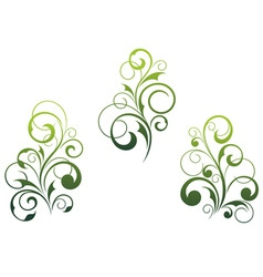 floral elements and motifs vector image