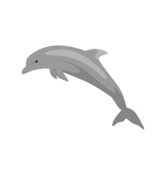 Monochrome Dolphin Isolated on White Background vector image