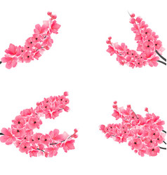 Set of flowering realistic branches with a pink vector
