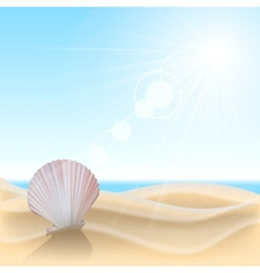 Shell on the beach vector