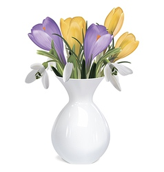 Spring bouquet crocuses and snowdrops in vase vector