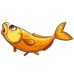 Yellow big fish vector