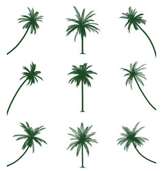 green palm trees vector image