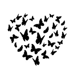 beautifil butterfly heart silhouette isolated on vector image vector image