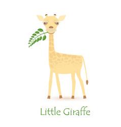 cute giraffe calf vector image