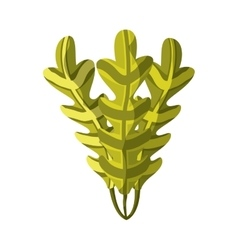 Algae icon Sea life design graphic vector