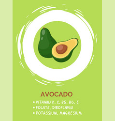 green half opened avocado on green background vector image