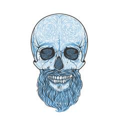 human skull with beard hand drawn vector image
