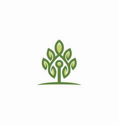 tree logo template design vector image