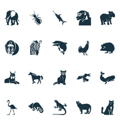 zoo icons set with eagle hedgehog flamingo and vector image
