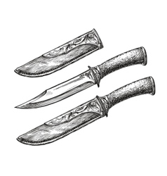 Hand-drawn vintage knife Sketch edged weapon vector image vector image