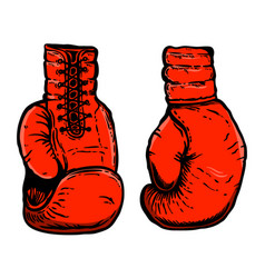 hand drawn boxing gloves design element vector image
