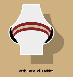 Knee joint health care icon sticker vector