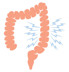 Problem with human large intestine vector