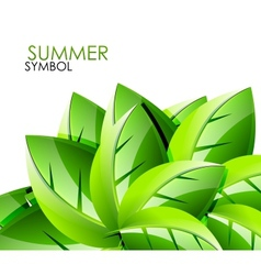 Summer leaves concept background vector image