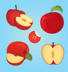 Ripe fruit apple slice vector