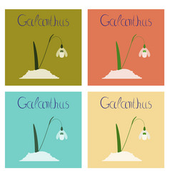 Assembly flat nature plant galanthus vector