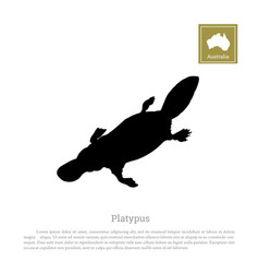 black silhouette platypus on a white background vector image