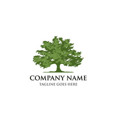green tree silhouette a tree logo design vector image