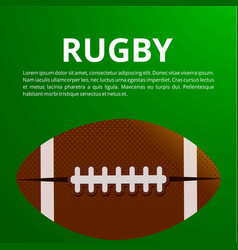 american football poster banner and brochure vector image