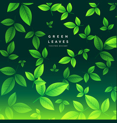 Awesome green tea leaves background vector