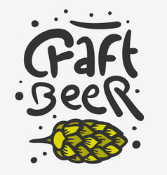 craft beer hand drawn design with beer hop vector image