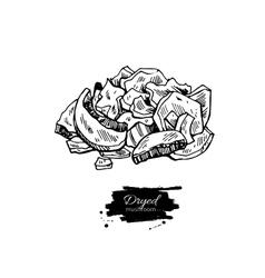 Dryed mushroom hand drawn vector image