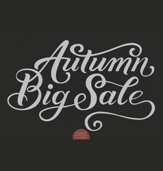 Hand drawn lettering - autumn big sale elegant vector