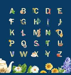 Herbal tea alphabet design with sage lavender vector