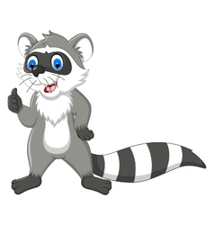 Raccoon cartoon thumb up vector