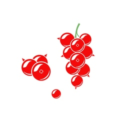 Red currant vector