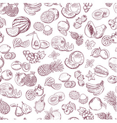 seamless pattern doodle fruits on white vector image