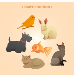 Home Pets Set Carrot Dog Rabbit Fish and Cats vector image vector image
